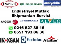 pendik electrolux servisi